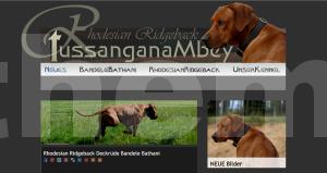 wordpress, website, webdesign von www.7themes.de